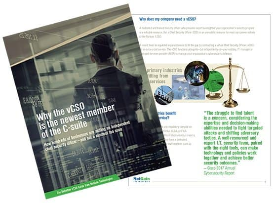 The definitive guide to the virtual Chief Information Officer (vCSO)